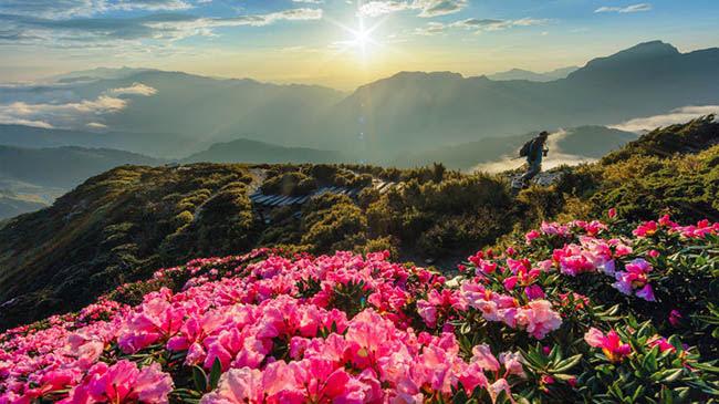 Du lịch - Đến Đài Loan đừng quên đi đủ những điểm đến tuyệt đẹp này - 5